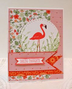 Flamingo Lingo, Wetlands, and Gold Soiree designer paper by Stampin' Up!