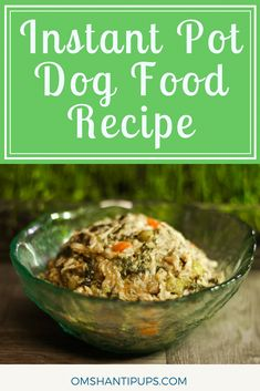 Have you seen all the scary major dog food brand recalls? There have been so many that it pushed me to finally start changing to homemade dog food in my Instant Pot. Read on to learn what to use and how to make the switch easily! Dog Treat Recipes, Healthy Dog Treats, Dog Food Recipes, Doggie Treats, Healthy Recipes, Make Dog Food, Homemade Dog Food, Pet Food, Puppy Food