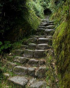 By Doug Holt - Inca Trail to Macchu Picchu