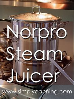 Stainless Steel Steam Juicer - I just got mine and will be trying recipes out soon Canning Tips, Home Canning, Canning Recipes, Steam Juicer, Canning Equipment, Water Bath Canning, Best Juicer, Juicer Recipes, Blender Recipes