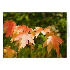http://www.zazzle.com/autumn_leaves_glow_card-137894248685440932