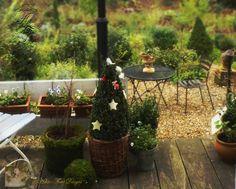 Photo © Hélène Flont‿ ◕✿: Mousse & symphorine : Un Noël au balcon/