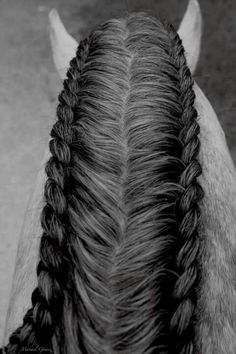 Cool braiding! For those of u who have or love horses.