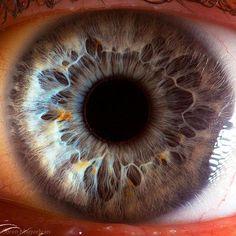 Ils en disent long sur vos secrets... Gros plan extrême sur vos yeux, découvrez la complexité de l'oeil humain http://