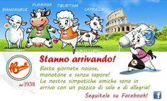Arrivano le simpatiche mascotte Brunelli. Seguile su http://www.facebook.com/BrunelliSpA