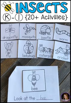 Insect Activities} for Kindergarten. Are you looking for a factual unit to introduce insects in your kindergarten and first grade classroom? Our insect unit is just what you need! Alphabet Activities Kindergarten, Insect Activities, Small Group Activities, Kindergarten Rocks, Preschool Classroom, Writing Activities, Educational Activities, Classroom Activities, First Grade Science