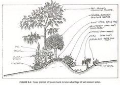 101 fascinating permaculture techniques from throughout the world & throughout the ages