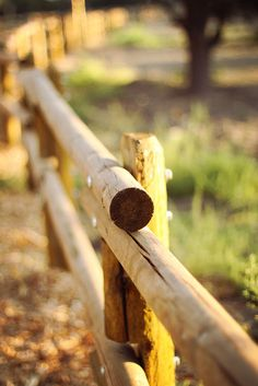 Incomparable Modern fence images,Fencing ideas new zealand and Front yard fence landscaping. Log Fence, Front Yard Fence, Farm Fence, Metal Fence, Fence Gate, Fence Doors, Fenced In Yard, Horse Fence, Fence Stain
