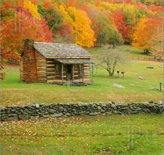 Google Image Result for http://www.featurepics.com/FI/Thumb300/20090719/Old-Cabin-1262456.jpg