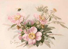 Paul de Longpre - Wild Roses with Bee