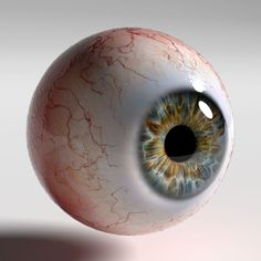 Human eye Photorealistic low-poly model ready for Virtual Reality (VR), Augmented Reality (AR), games and other real-time apps. Photoealistic human eye o. Medical Illustration, Illustration Art, Art Illustrations, Drawing Sketches, Art Drawings, Iris Drawing, Sketchbook Drawings, Drawing Faces, Drawing Tips