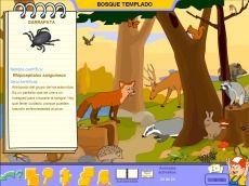 """Los animales del bosque desde """"Los animales con Pipo"""" #educación #software #ilustración"""