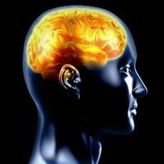 Curcumin Blocks Brain Protein that Triggers Alzheimer's Disease Connect Games, Connect Online, Binaural Beats, Train Your Brain, Brain Waves, Brain Training, Brain Activities, Epilepsy, Psychology