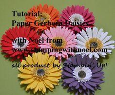Paper Gerbera daisies video tutorial