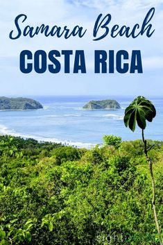 Do you love lesser-known beach vacation destinations? Playa Samara Costa Rica is for you! This small town offers the best of everything - local culture, gorgeous scenery, adventure, and even monkeys! Read the guide to learn more about things to do in Samara + hotels, restaurants, and other recommendations. via @thegirlandglobe