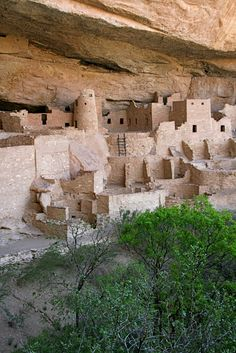 Cliff Palace at Mesa Verde National Park, Colorado. Climb up, down and over this ancient community.