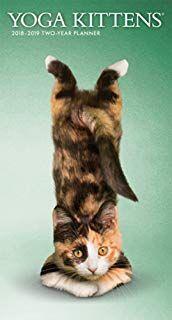 Amazon Com Cat Yoga Calendar Cat Yoga Animal Yoga Cats