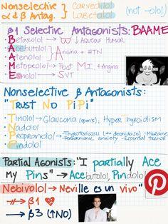 Beta Adrenergic Drugs: Agonists & Antagonists