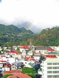 Roseau, Dominica is a wild and beautiful island in the Caribbean. It is a popular cruise ship destination.