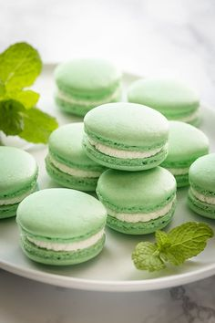 Mint French Macarons ~Sweet & Savory Mint French Macarons with Minty White Chocolate Ganache Filling Macaroon Recipes, Dessert Recipes, Macaron Fimo, Mint Green Aesthetic, Macaroon Cookies, Shortbread Cookies, French Macaroons, Best Comfort Food, Comfort Foods