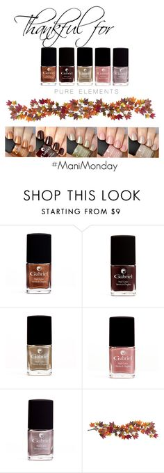 """""""Pure Elements Collection"""" by jeanamelia on Polyvore featuring beauty and Nearly Natural"""