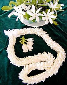 Our Great ‪ Escape continues in Tahiti where our Tiare Lei Collection was inspired! Hawaiian Crafts, Hawaiian Art, Hawaiian Flowers, Tropical Flowers, Fresh Flowers, Beautiful Flowers, Hawaiian Leis, Flower Lei, Flower Bouquet Wedding