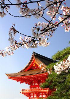 Kyoto, Japan. Japonska. Čist drug svet...vredno kdaj vidt :)