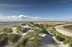 East Head, West Wittering. A wild area of golden sand at the entrance to Chichester Harbour. AONB. www.conservancy.co.uk