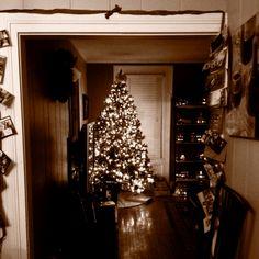 My warm cozy Christmas tree