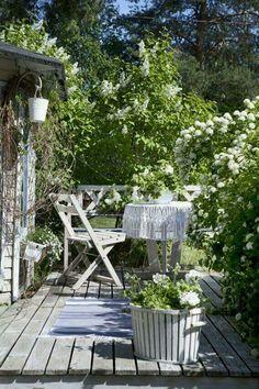 Sfeerbeeld tuin