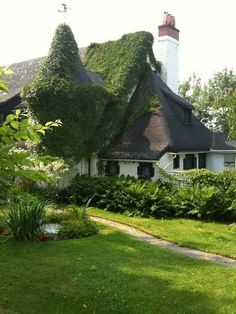 ivy covered cottage