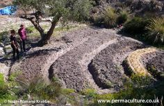 The Permaculture Research Institute Tabernas, in Spain, is being developed. Based in the Tabernas Desert, the centre's design is being adapted to its location, working with the climate and...