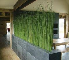 Cloison en herbe, Hortus Verde | De Particulier à Particulier - PAP