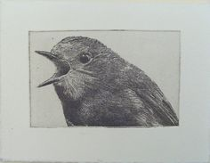 original etching of a shouting birdhand pulled by Fleurografie, $9.49  THIS IS MY LIFE.
