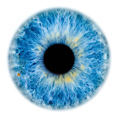 Draw Human Eyes Windows to the Soul - Iris gallery Blur Image Background, Desktop Background Pictures, Blur Background In Photoshop, Blur Background Photography, Studio Background Images, Light Background Images, Picsart Background, Hair Png, Pics Art