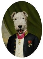 Fox Terrier by Thierry Poncelet