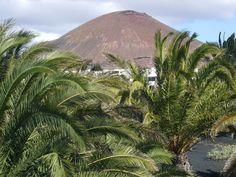 view near Fundación César Manrique, Lanzarote