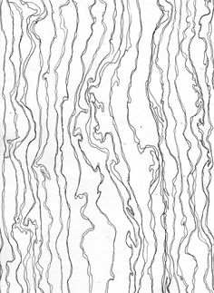 Rachel Benson - map contours, line drawing with ink (2010)