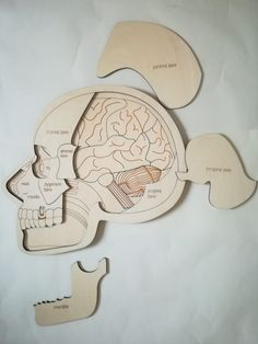 Have you ever wonder how does human brain works ? How all your thoughts can and dreams can be squeezed into such small place ? Our 3 levels puzzles can help you solve all this problems Woodworking Shop Layout, Unique Woodworking, Woodworking Projects That Sell, Woodworking Crafts, Puzzle Montessori, Montessori Toys, Laser Cutter Ideas, Laser Cutter Projects, Gravure Laser