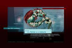 """Site internet de l'exposition """"Dragons"""" au Museum national d'Histoire Naturelle #Minitl"""