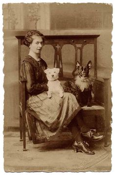 ::::::::::: Antique Photograph :::::::: Family Portrait - a woman and her dogs.