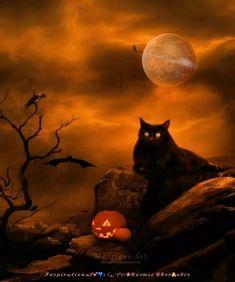 Halloween Friday The 13th, Happy Halloween Quotes, Happy Halloween Pictures, Charlie Brown Halloween, Fete Halloween, Halloween Magic, Halloween House, Scary Halloween, Vintage Halloween
