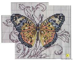 butterfly set 2/9