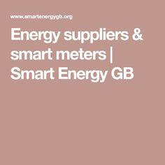 Energy suppliers & smart meters | Smart Energy GB