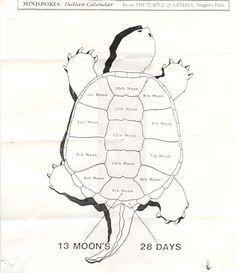 13 Moons on Turtles Back - calendar model. Art project template.