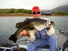 Seven Hot Bass Fishing Tips - AverageOutdoorsman Bass Fishing Tips, Kayak Fishing, Fishing Tackle, Fishing Hole, Trophy Fish, Australian Bass, Bait Caster, Bass Boat