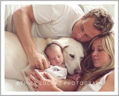must have maternity / newborn photos. Louis newborn, maternity, child and family photographer. Life Love Shopping Feature on the Daily Buzz. Newborn And Dog, Foto Newborn, Newborn Session, Photos With Dog, Family Photos, Family Posing, Family Portraits, Newborn Pictures, Baby Pictures