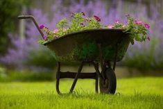 Violet Garden, Purple Garden, Nice Picture Quotes, Grandmas Garden, Garden Cart, Cute Cottage, Garden Architecture, Sense Of Place, Everything Is Awesome