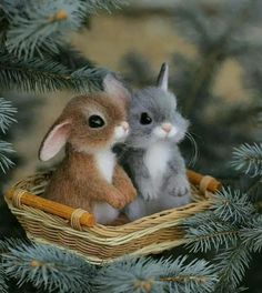 Good Morning Cards, Woodland Party, Good Night, Funny Jokes, Sunday, Easter, Painting, Beautiful, Instagram
