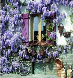 https://www.facebook.com/pages/Provence-Mon-Amour/298011073568174